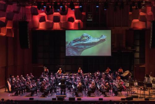Concert-GPH-19047